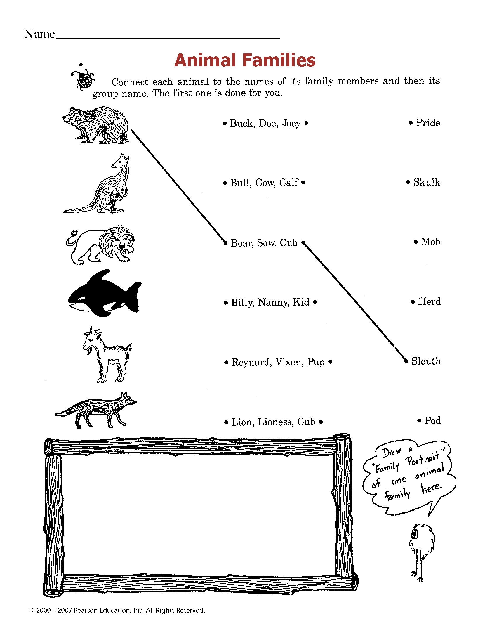 Сочинение о любимом домашнем животном на англиском языке с переводом 6 класс